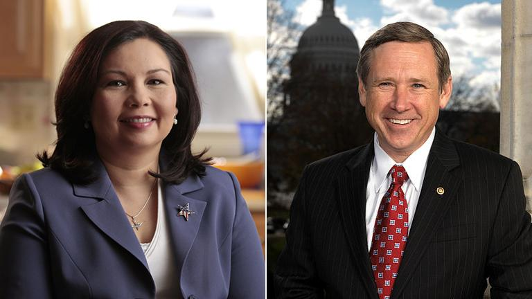 Illinois candidates for U.S. Senate Democrat Tammy Duckworth and Republican incumbent Mark Kirk won their respective primaries.