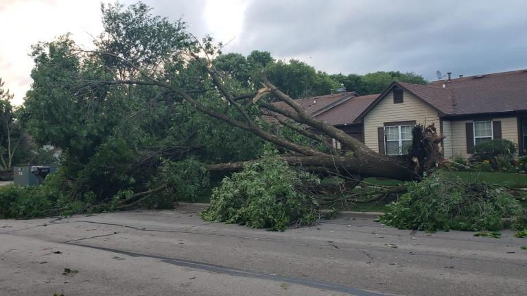 A strong line of storms and at least one tornado ripped through the Chicago suburbs Sunday, June 20, 2021. (Courtesy of Ruth Day / @glasshill)
