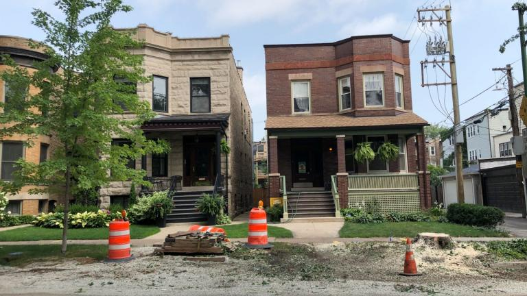 With a tree removed in front of the home on the right, Chicago has a new gap in its tree canopy cover. (Patty Wetli / WTTW News)