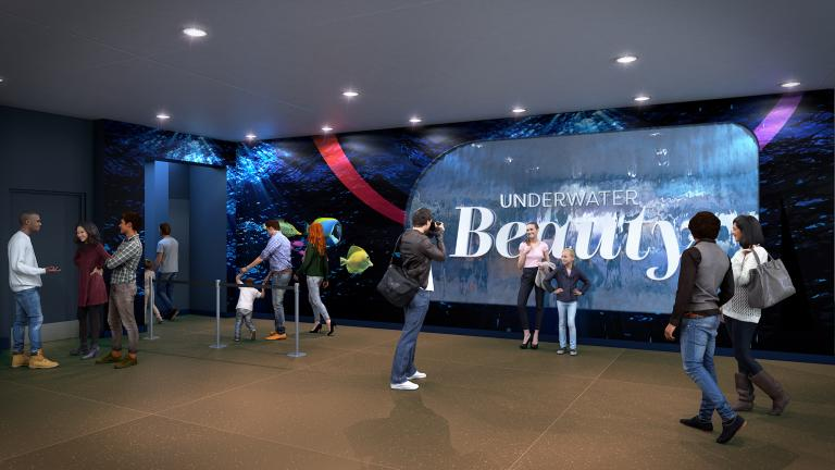 "A rendering of Shedd Aquarium's new ""Underwater Beauty"" exhibit, which opens in May. (©Shedd Aquarium/Brenna Hernandez)"