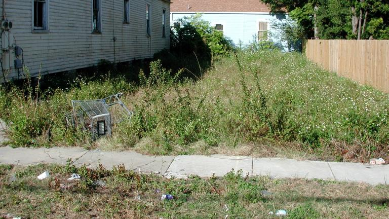 The Office of Inspector General has released a report on Streets & San's weed-cutting performance. (Bart Everson / Flickr)