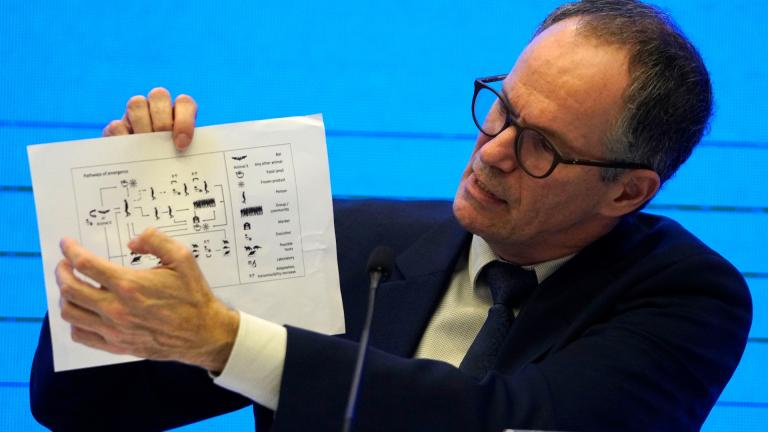 In this Feb. 9, 2021, file photo, Peter Ben Embarek of the World Health Organization team holds up a chart showing pathways of transmission of the virus during a joint news conference at the end of the WHO mission in Wuhan in central China's Hubei province. (AP Photo / Ng Han Guan, File)
