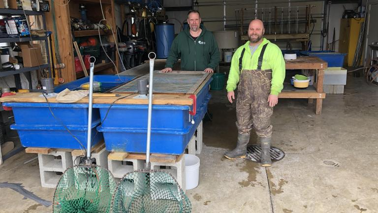 Cook County Fisheries biologists Jim Phillips and Steve Silic in the walleye hatchery.