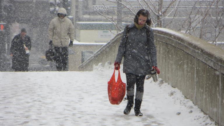 Winter in Chicago, 2013 (David Wilson / Wikimedia Commons)