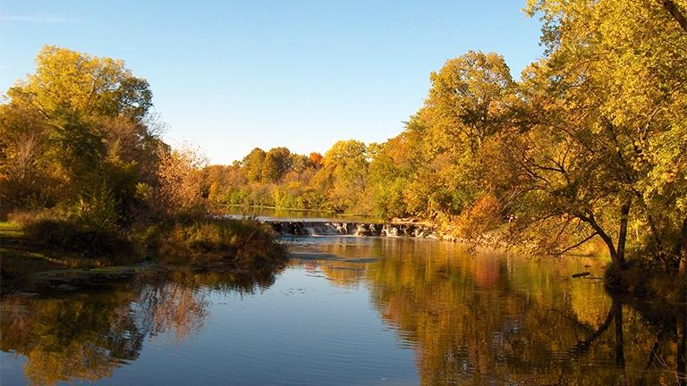 DuPage County, which includes Warrenville Grove Forest Preserve, is the healthiest county in Illinois, according to a recent report.