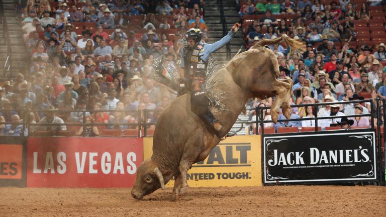 Rubens Barbosa won the 2017 Professional Bull Riders' Chicago Invitational. (Andy Watson / Bull Stock Media)