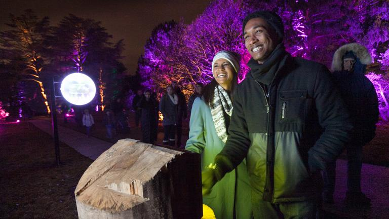 """Light up your weekend at the """"Illumination"""" show starting Friday. (Courtesy of the Morton Arboretum)"""