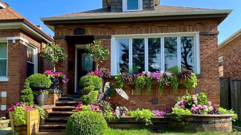 West Lawn residents Mitzi and Gilberto Cantu won the window/planter box category in the Chicago Bungalow Association's fifth annual garden contest. (Chicago Bungalow Association)