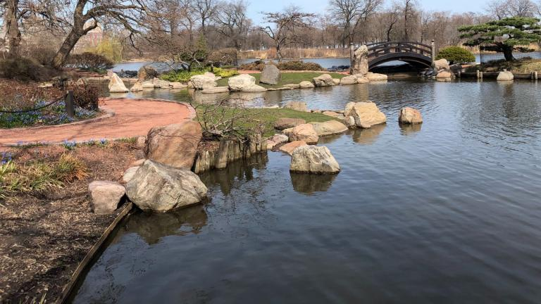 Wooded Island's Japanese Garden, in spring. (Patty Wetli / WTTW News)