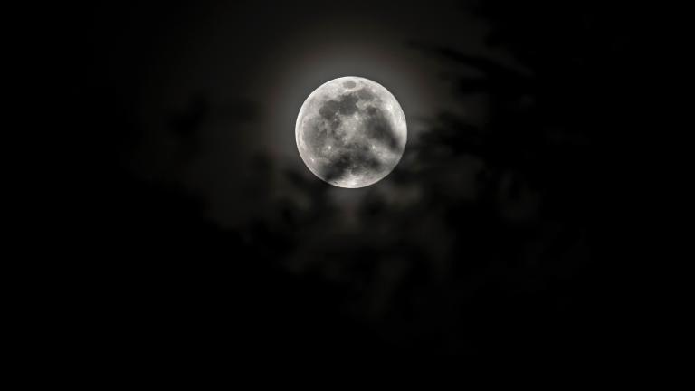 Super Worm Moon, photographed in March 2019. (Twelvizm / Flickr)
