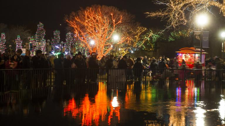 ZooLights kicks off Friday at Lincoln Park Zoo. (Courtesy of Lincoln Park Zoo)
