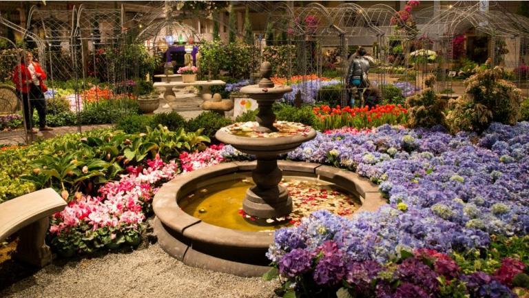 Courtesy of Chicago Flower & Garden Show