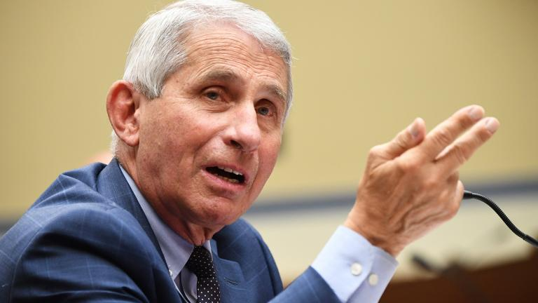 Dr. Anthony Fauci, director of the National Institute for Allergy and Infectious Diseases, testifies before a House Subcommittee on the Coronavirus Crisis hearing on July 31, 2020 in Washington, DC. (Photo by Kevin Dietsch-Pool / Getty Images)