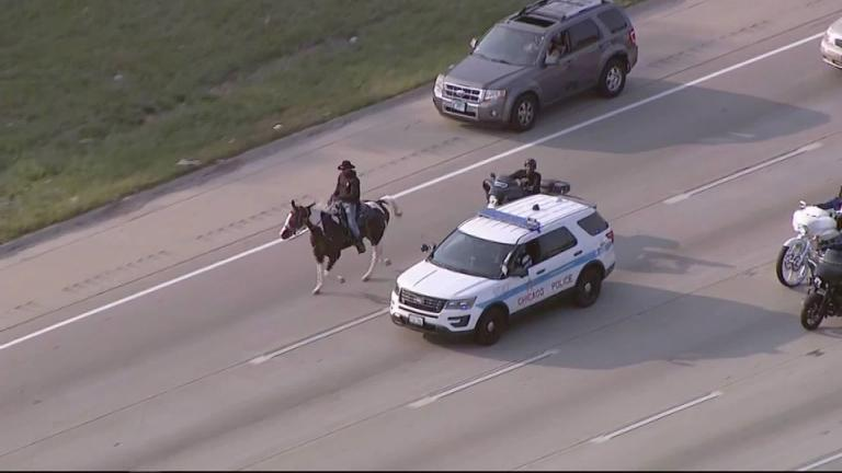 "The ""Dreadhead Cowboy"" is seen on the Dan Ryan Expressway in Chicago. (Credit: WLS)"