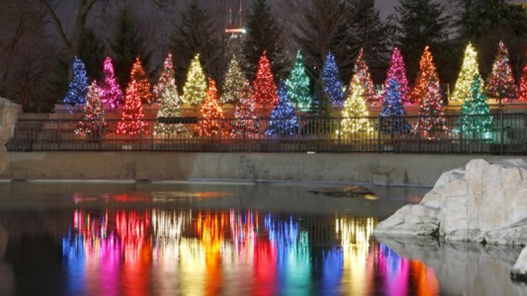 ZooLights. Courtesy of the Lincoln Park Zoo.