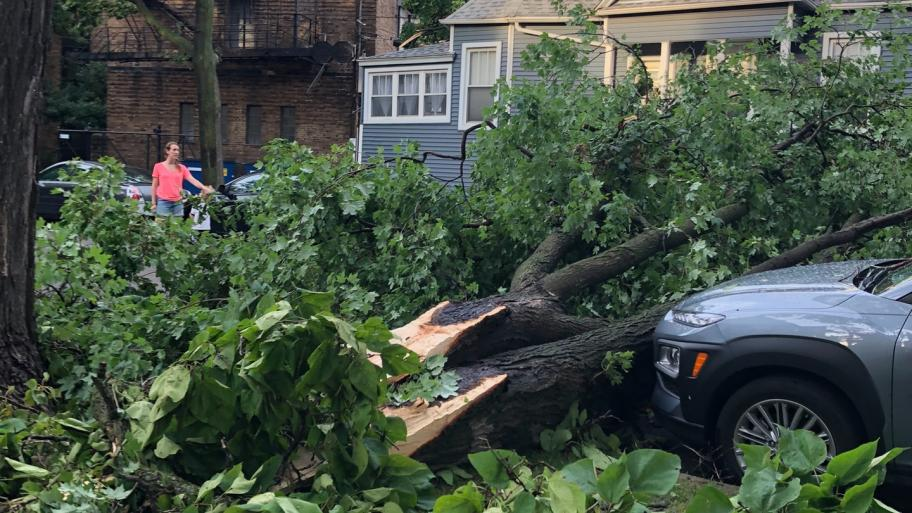 Monday's storm caused widespread damage, including in Chicago's Lincoln Square, where a Weatherbug station recorded an 85 mph wind gust. (Patty Wetli / WTTW News)