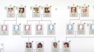A Boom in Genealogy