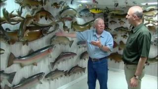 August 23, 2012 - A Passion for Fish