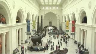 December 19, 2012 - Facing Cuts, Field Museum Makes Changes