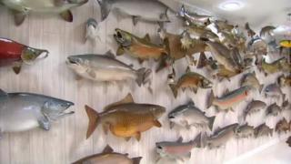December 27, 2012 - A Passion for Fish
