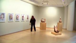 February 19, 2013 -  DePaul Art Museum Environmental Gallery