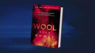 """March 18, 2013 - """"Wool"""""""