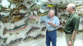 June 20, 2013 - A Passion for Fish