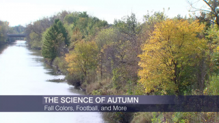 The Science Behind Fall Colors, Football and More