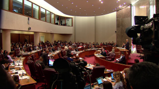 City Council Tackles Municipal IDs, Police Reform, Airport S