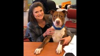 Susan Russell (Chicago Animal Care and Control / Facebook)