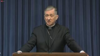 Cardinal Blase Cupich urges lawmakers Wednesday in Springfield to pass gun control laws.