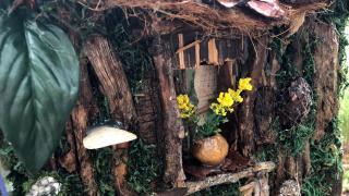 Fairy house, Humboldt Park. (Patty Wetli / WTTW News)