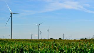 Wind turbines at the Mendota Hills Wind Farm in Steward, Illinois. (Tom Shockey / Flickr)