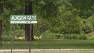 Jackson Park in Chicago. (WTTW News)