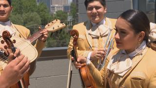 Members of Mariachi Herencia de Mexico (WTTW News)