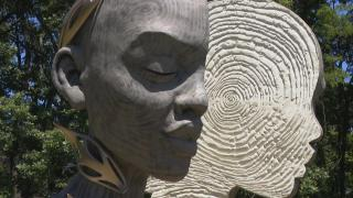 Although they look like wood, Daniel Popper's sculptures in the Human + Nature exhibit are made of concerete. (WTTW News)