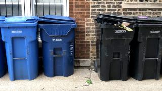 Chicago's black and blue carts have been the city's waste management workhorses. (Patty Wetli / WTTW News)