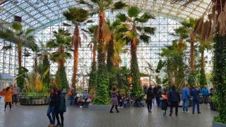 The Crystal Gardens is pictured at Navy Pier in Chicago. (Peter Griffin / Alamy)