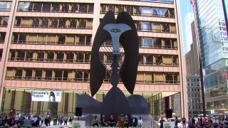 The Chicago Picasso Celebrates its 50th Anniversary