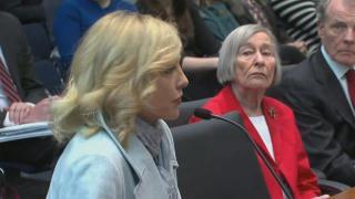 Web Extra: Denise Rotheimer on State Sen. Ira Silverstein