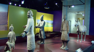 China's Ancient Terra-Cotta Army Invades the Field Museum