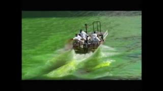 March 17, 2014 - Web Extra: Green River