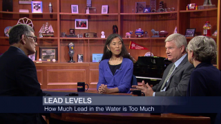 Taking a Closer look at Lead Exposure