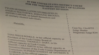 February 27, 2014 - Lawsuit Alleges Brutality at Cook County