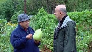 Global Garden Cultivates Hope for Refugee Farmers