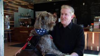 March 24, 2014 - PTSD Service Dog