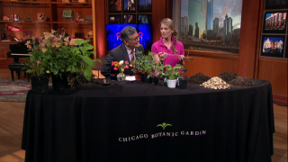 May 21, 2014-Gardening Tips from Eliza Fournier