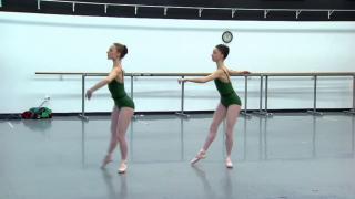 February 13, 2014 - Joffrey Ballet