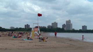 July 24, 2014 - Beach Bacteria