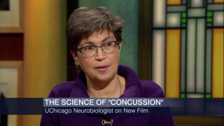 University of Chicago Neuroscientist Reacts to 'Concussion'